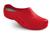 orthoclogs-rood